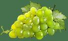 Produzione di vini bianchi colline moreniche Mantova